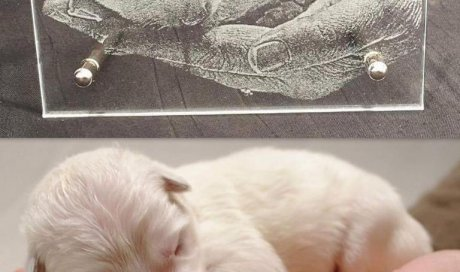 DIAM Laser Gravure sur verre Lyon, cadre photo personnalisé avec une photo. Photo gravé